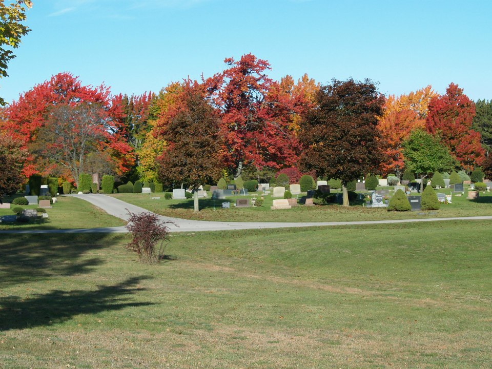 Fall Trees at the Cemetery