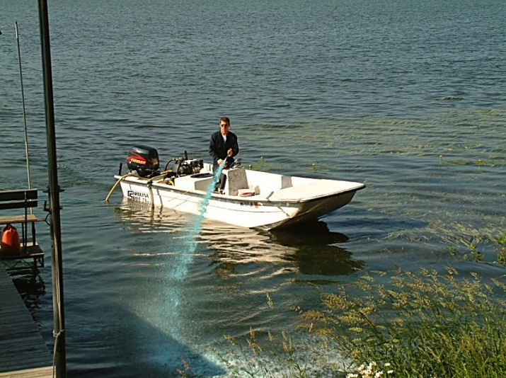Milfoil Treatment